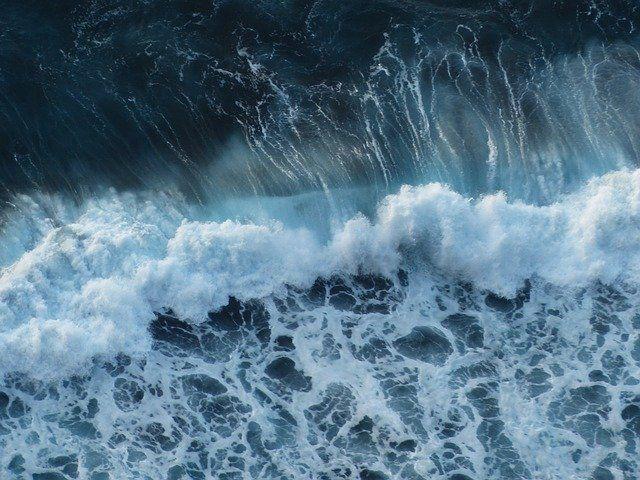 wave-384385_640 (1).jpg