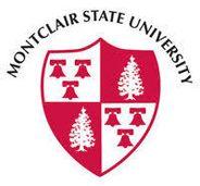 MSU logo.jpeg